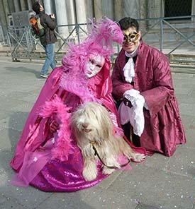 Dog at Venice Carnival