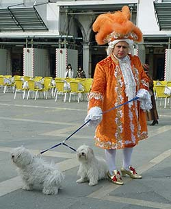 Dogs at Venice Carnival