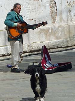Venice street musician with dog