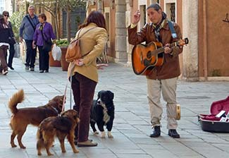 Venice busker and admirers