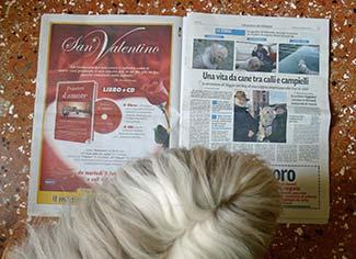 Maggie reads LA NUOVA DI VENEZIA E MESTRE