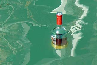 Liquor bottle in Venice canal