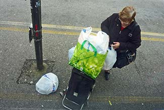 Panorama shopper