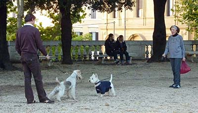 Dogs in Gardini del Quirinale24