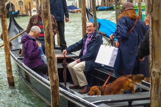 Dog boards traghetto in Venice