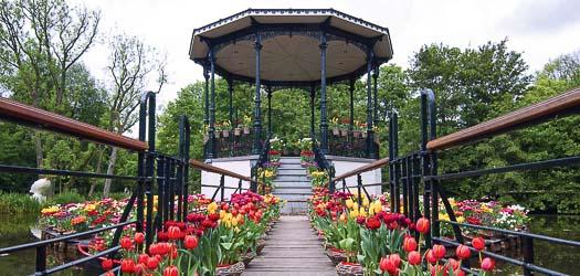 Tulip Island, Amsterdam